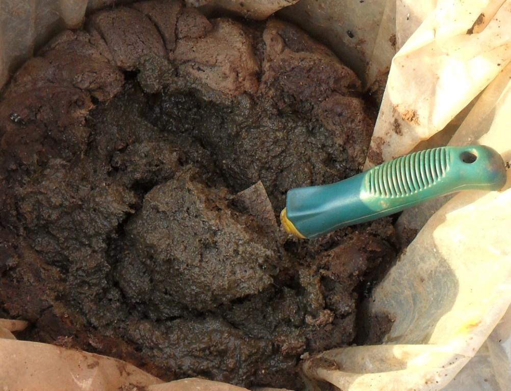 Из куриного помета можно сделать компост