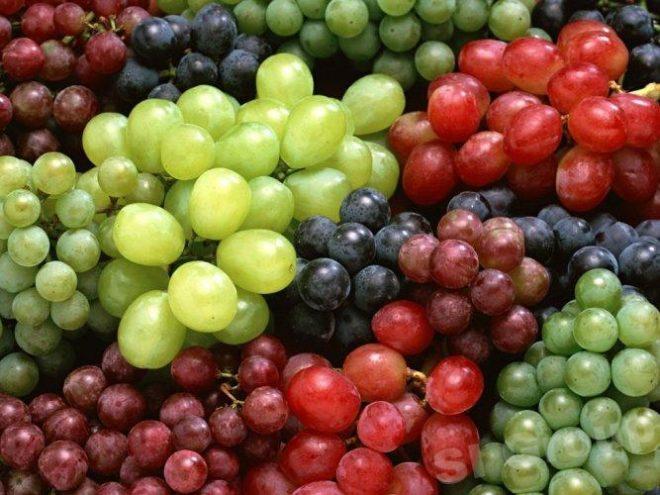 В органическом удобрении содержатся все питательные вещества
