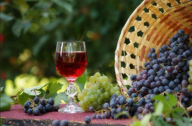 Мерло часто называют дамским вином