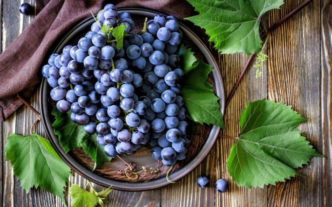 Сорт Эффект не подвержен горошению урожая