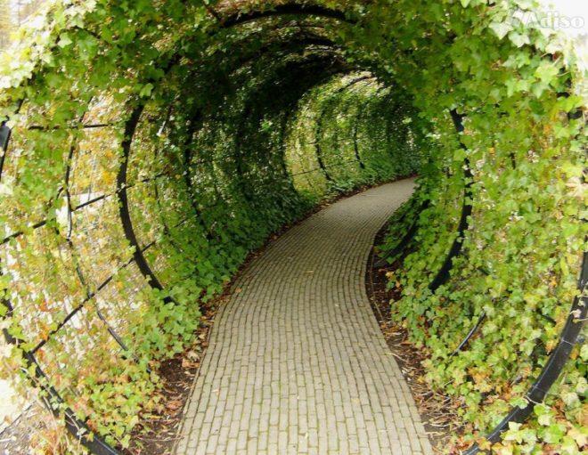Тоннель на даче своими руками