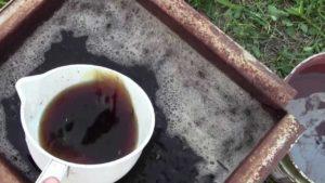 После завязывания ягод винограда можно провести внекорневую подкормку