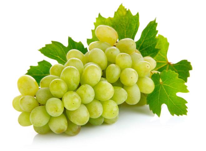 В любом сорте винограда есть необходимый для нашего организма набор полезных веществ