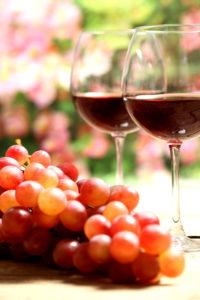 Цвет винограда уменьшает количество возможных вариантов искомого названия сорта